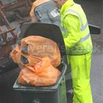 Council refuse workman collecting wheelie bins wearing a yellow pvc coverall in order to keep dry in the rain