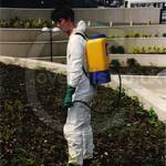 Man spraying weeds wearing a white disposable overall